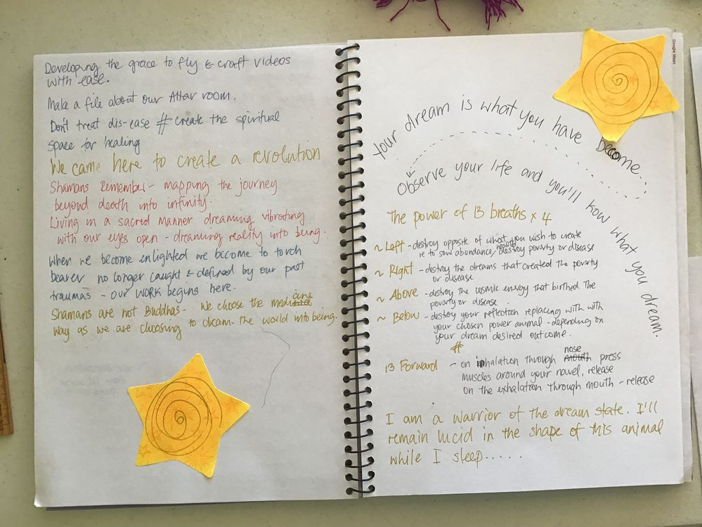 My visual course diary
